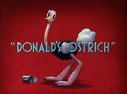 DonaldOstrich