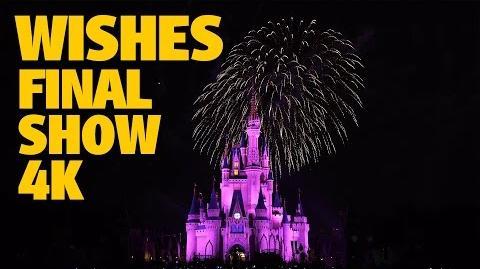 Final 'Wishes' Magic Kingdom Fireworks 4K Walt Disney World