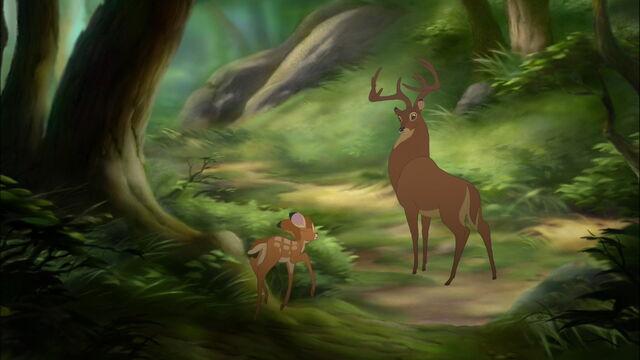 File:Bambi2-disneyscreencaps.com-4964.jpg