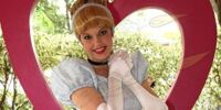 Cinderella Costumes Through the Years