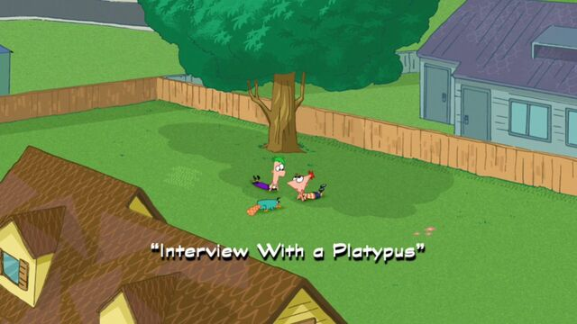 File:Interview with a Platypus title card.jpg