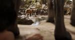 Jungle Book 2016 35