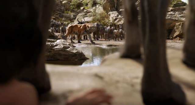 File:Jungle Book 2016 35.png