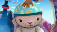 Lambie with a bike helmet on