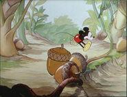 Mickey's Garden-62