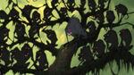Tarzan-disneyscreencaps com-4148