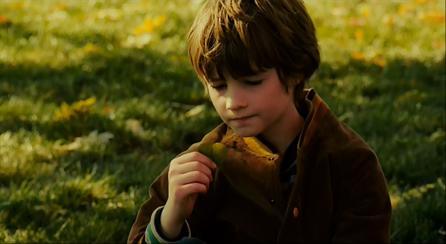 File:Timothy looking at a leaf.PNG