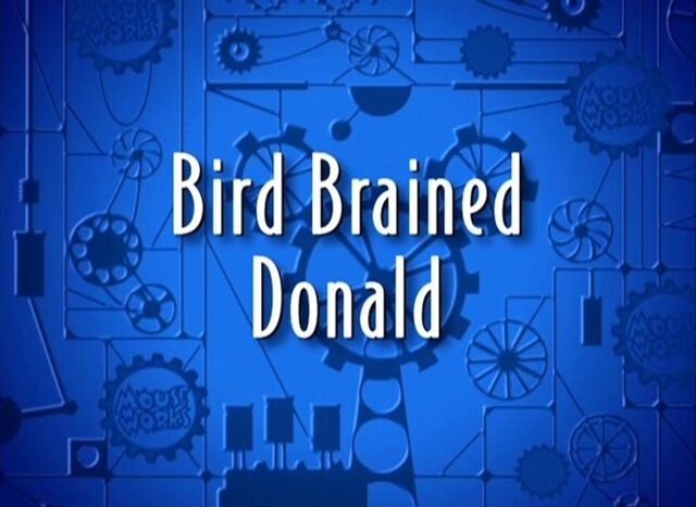 File:Bird brained donald 3large.jpg