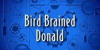 Bird Brained Donald