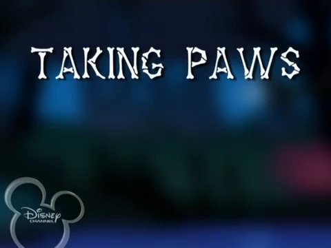File:Taking Paws.jpg