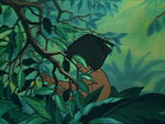 Jungle-book-disneyscreencaps.com-5100