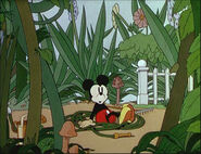 Mickey's Garden-32