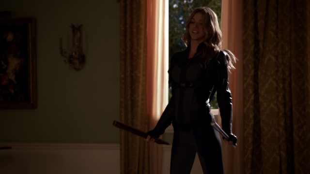 File:Agents of Shield Fractured House 292.png