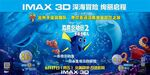 Finding Dory Chinese Quad Poster
