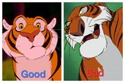 Bad and good tigers