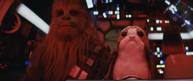 File:Star Wars The Last Jedi - Photography - Porgs.jpg