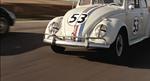 The-Love-Bug-62