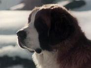 1977-barry-3