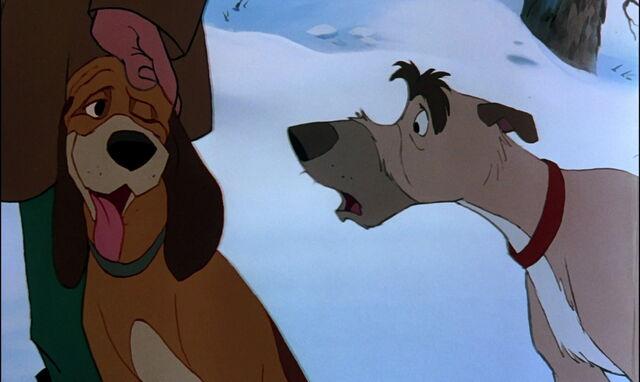 File:Fox-and-the-hound-disneyscreencaps.com-4085.jpg