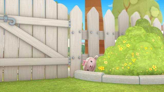 File:Lambie in the bush.jpg