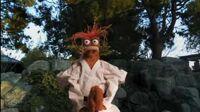 Pepe martial arts