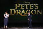 D23-Petes-Dragon