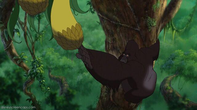 File:Tarzan-disneyscreencaps.com-2490.jpg