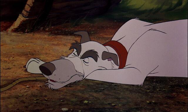File:Fox-and-the-hound-disneyscreencaps.com-2086.jpg