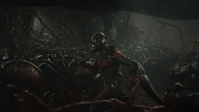 File:Ant-Man (film) 86.jpg