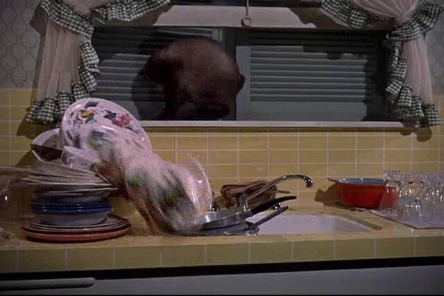 File:That-darn-cat-disneyscreencaps.com-193.jpg