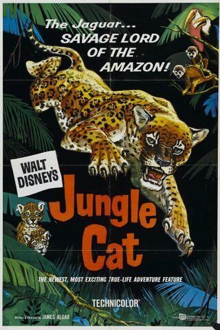 File:1960-jaguar-1.jpg