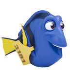My Friend Dory