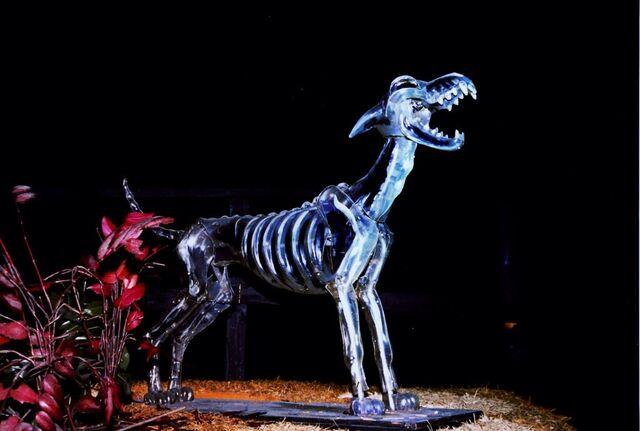 File:Haunted Mansion Howling Wolf Skeleton.jpeg