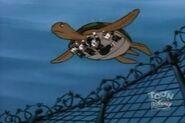 TurtleTrick