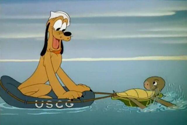 File:Pluto and turtle3.jpg