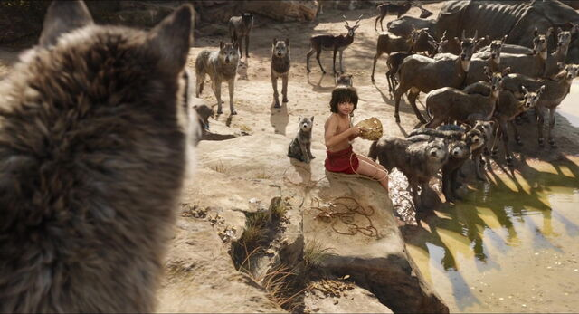 File:Jungle-book-2016-disneyscreencaps.com-929.jpg