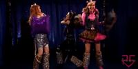 Stray Kitties
