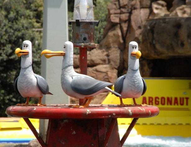 File:Seagulls-Nemo.jpg
