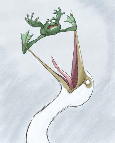 File:Birdfrog.jpg