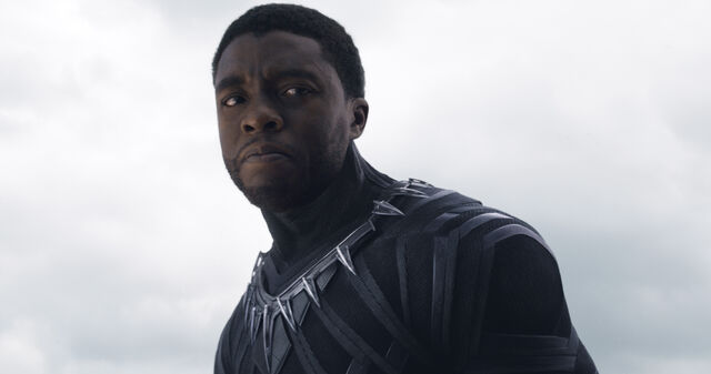 File:Black Panther unmasked.jpg