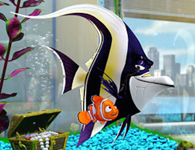 File:Gill with Nemo.jpg