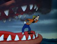 Goofy in whale