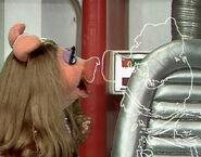Piggy link kissy kissy tms307