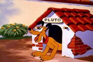 Plutos blue note happy
