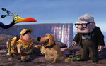 Russell dug carl fredricksen in pixars up-wide