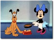 Minnie and pluto look surprised