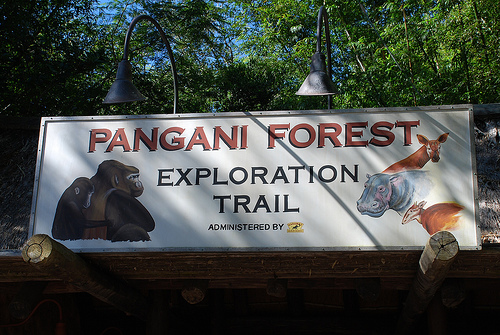 File:Pangani Forest Exploration Trails.jpg