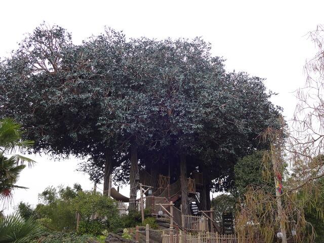 File:La Cabane des Robinson.jpg