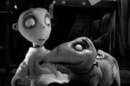 Film-review-frankenweenie-.jpeg-460x307