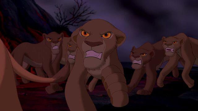 File:Lionesses attack.jpg